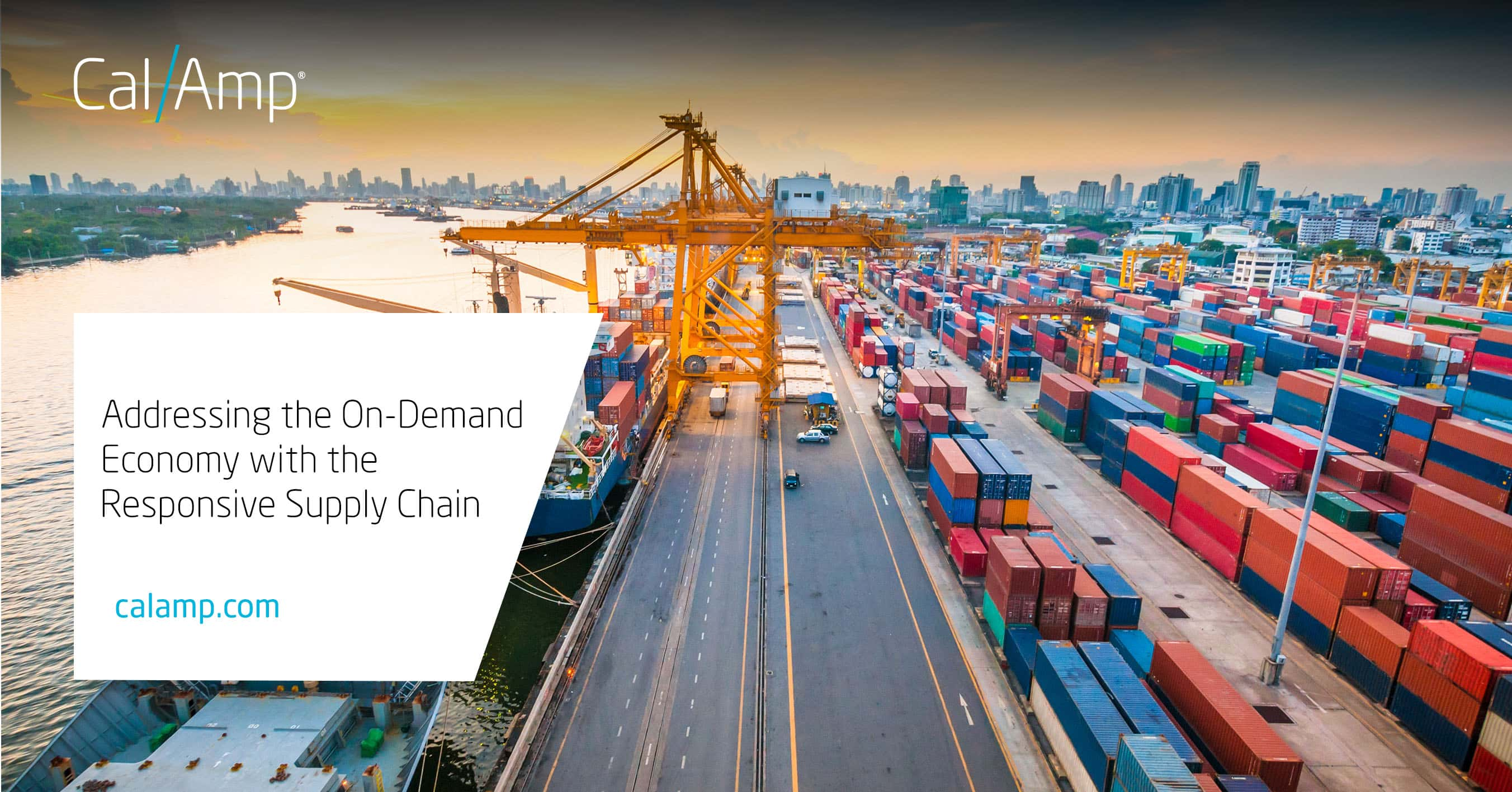 Addressing the On-Demand Economy with the Responsive Supply Chain