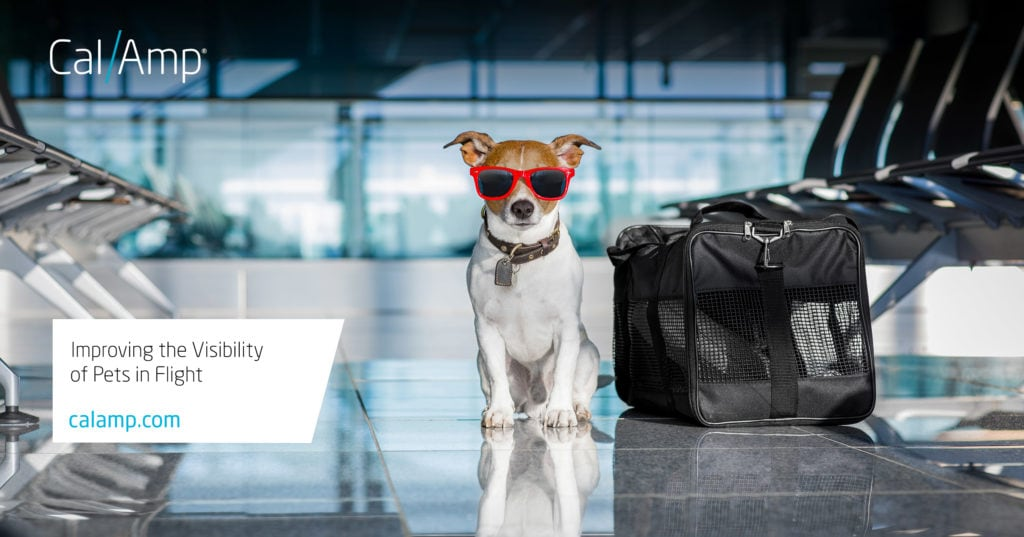 CalAmp-CargoSense Protect Pets Who Fly